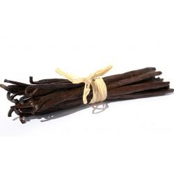 20 Gousses de vanille 15cm (emballage en plastique alimentaire)